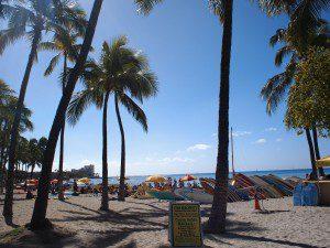 やっぱりハワイはいいなあ。青さが最高!